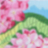 93 Pink Hydrangea.jpg
