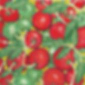 11G Farmer's Market Tomatoes #2.jpg