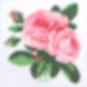 77A Large English Rose.jpg