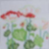 153B Chinese Poppies.jpg
