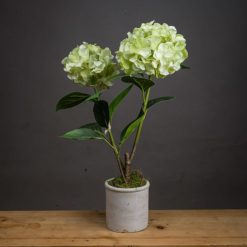 Light Green Oversized Hydrangea Spray