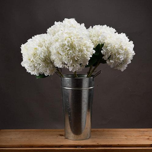 Luxurious White Hydrangea