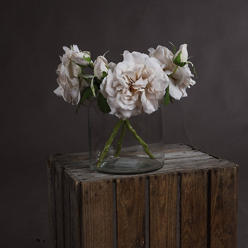 White Short Stem Rose