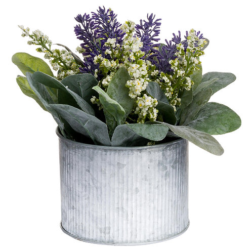 Lavender And Lily In Tin Pot