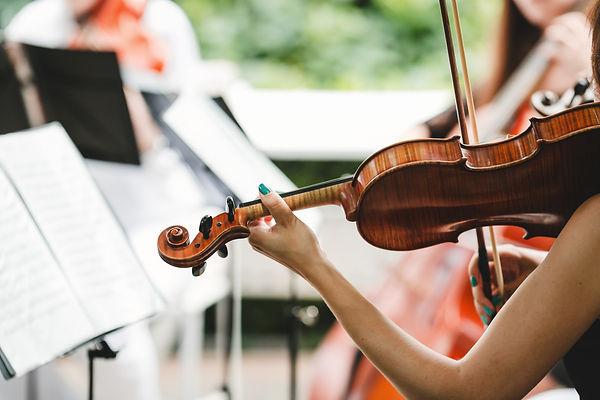 Woman plays the violin.jpg