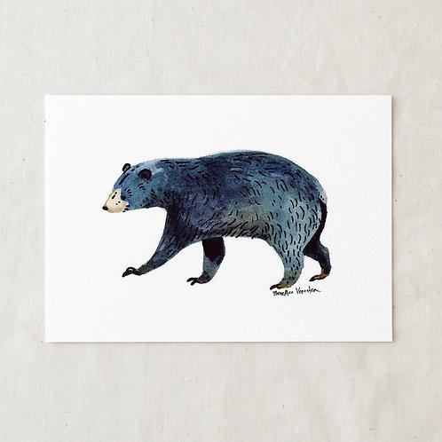 5 x 7 Black Bear Art Print by Wildship Studio