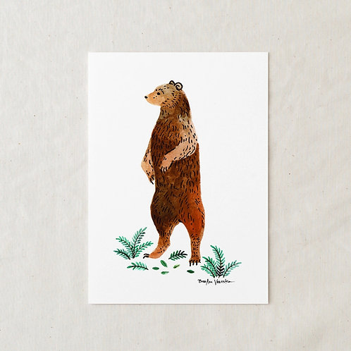 5 x 7 Grizzly Bear Art Print by Wildship Studio