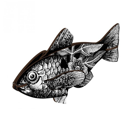Vertigo Fish by MIHO Unexpected Things