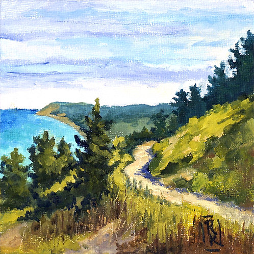 'Bluff Trail' Oil on Canvas by Ruth Kitchen