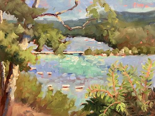 'Pierce Stocking Overlook -- July Morning' by Lori Feldpausch