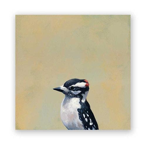 8 x 8 Downy Woodpecker Panel Wings on Wood by The Mincing Mockingbird