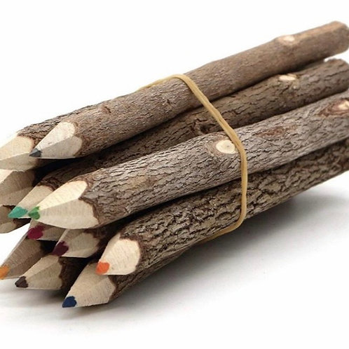 Tree Branch Colored Pencil Bundle