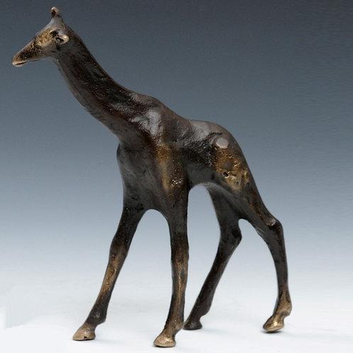 Giraffe by Scott Nelles