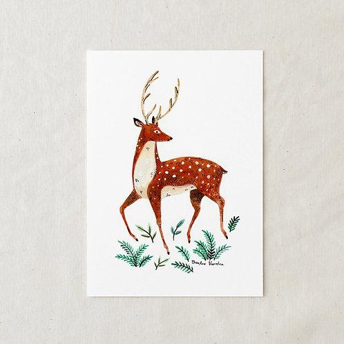 5 x 7 Deer Art Print by Wildship Studio
