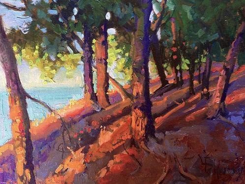 'On Sunset Drive -- Glen Arbor' by Lori Feldpausch