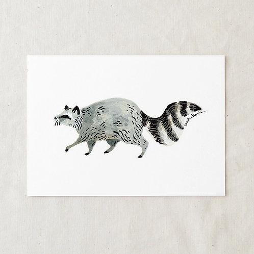 5 x 7 Racoon Art Print by Wildship Studio