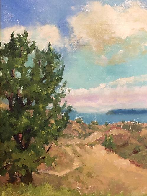 'Lakeshore Dunes' by Lori Feldpausch