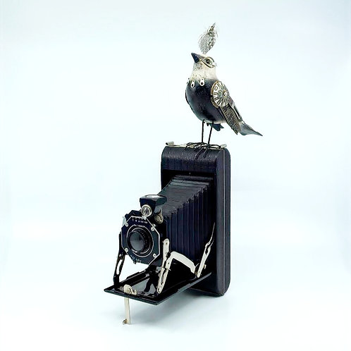 Hand-carved Wagtail on Vintage Camera by Mullanium