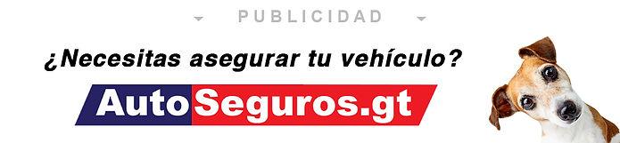 AutoSeguros-Interempresas-Bruno-01.jpg