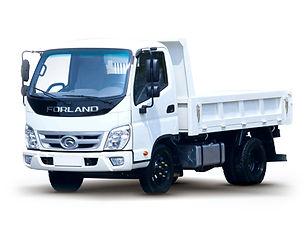 Camion Forland Peq.jpg