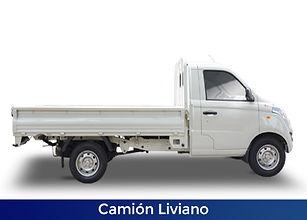 FOTON-CamionLiviano-web-F.jpg