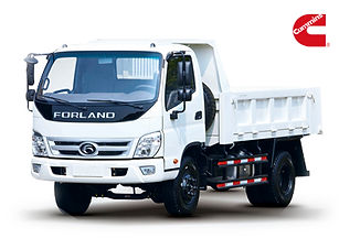 Camion Forland Gde.jpg