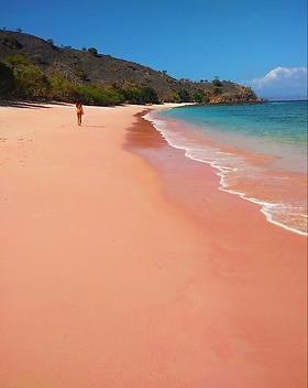 Explore Pink Beach Komodo