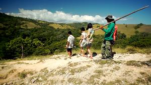 Rinca island komodo, dragon tour in Rinca island, Rinca island komodo tour. Komodo island tour with Labalaba Boat.
