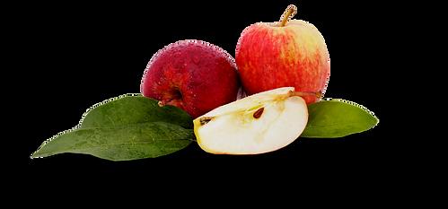 manzana logo sombras 2 (1).png