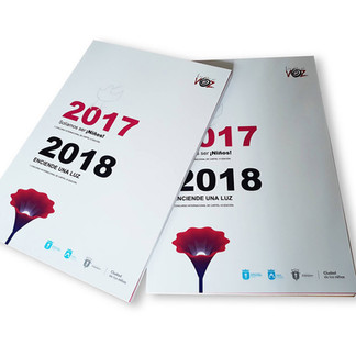 LIBRO2017_2018.jpg