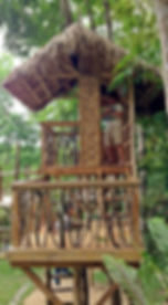 faci_natureplayscape02.jpg