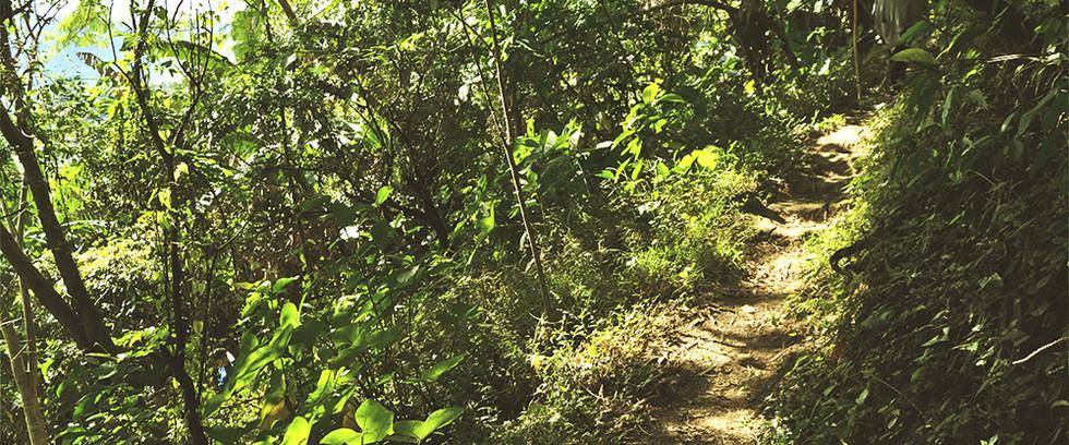 Laudato Si Hiking Trail