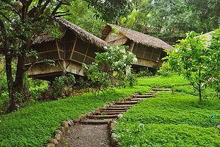 Bamboo Cabins