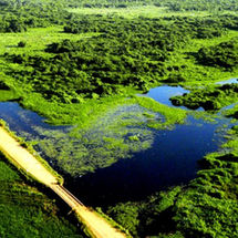 The Tranpantanal highway