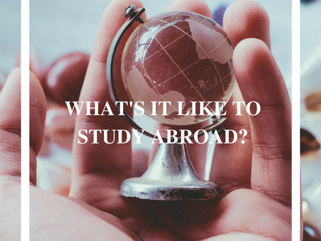 WHAT'S IT LIKE TO STUDY ABROAD?