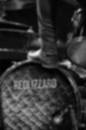 Redlizzzard Live 2019