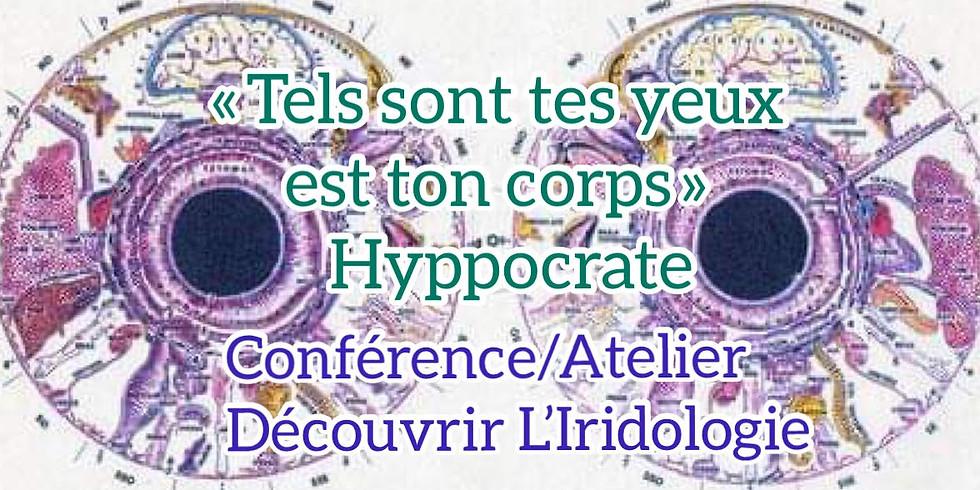 Conférence/Atelier Découvrir L'iridologie - « Tels sont tes yeux tel est ton corps » Hyppocrate Tarif libre