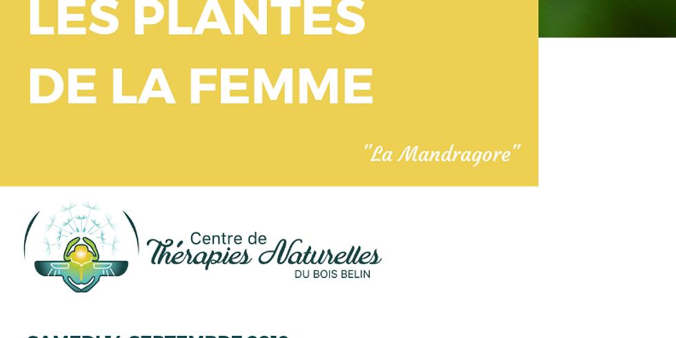 Conférence: LES PLANTES DE LA FEMME le samedi 14 septembre