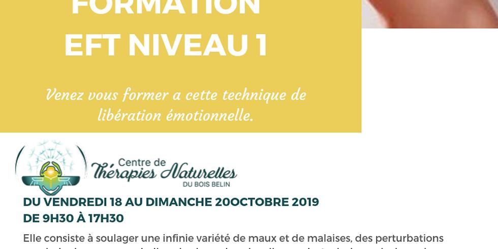 Formation EFT NIVEAU 1 DU VENDREDI 18 AU DIMANCHE 20 OCTOBRE 2019 avec Cendrine Cassiede