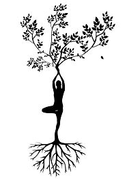 silhouette-women-tree-yoga-meditation-ha