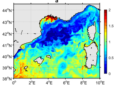 Primary producer dynamics and deep convective overturn in the Mediterranean Sea