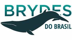 É possível distinguir diferentes baleias assim como nós sabemos reconhecer as pessoas?