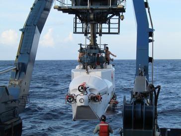 Mergulho para a vida na escuridão: uma pesquisa nas profundezas do mar