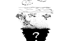 E se o mar secasse?