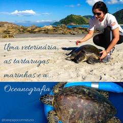 Uma veterinária, as tartarugas marinhas, e a oceanografia