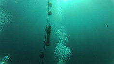 Os sons do oceano