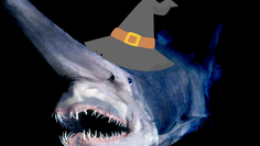 Festa das bruxas no oceano