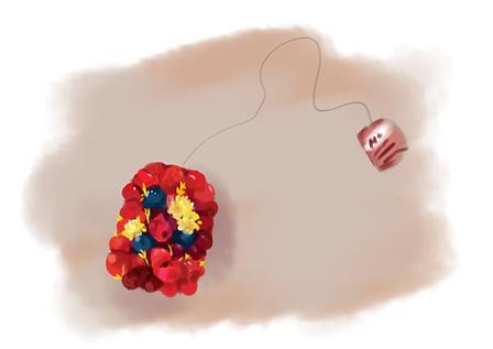 raspberry 2.png