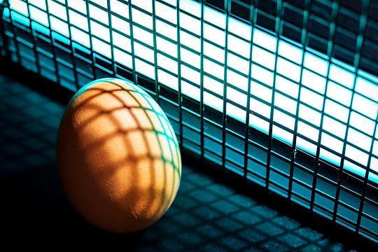 Blue Light Egg.jpg