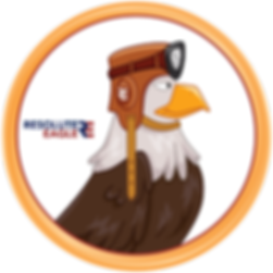 Mr Resolute Eagle.png